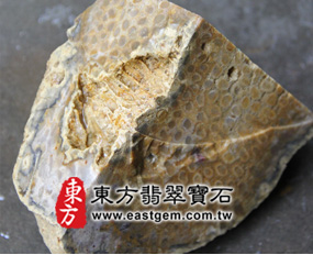 菊花石(Chrysanthemum stone)